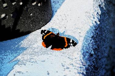 Papillon Vulcain by crapopabo