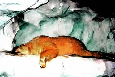 Polar Sleeping under the Stars by crapopabo