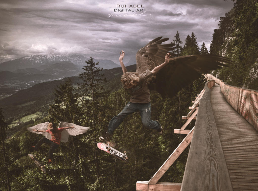 Skate or fly by Rui-Abel