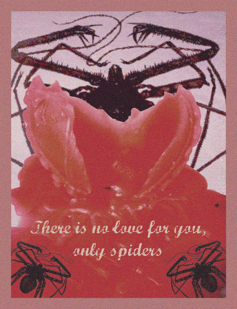 Spider Valentine postcard by Dexter-the-scorpio