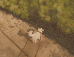 a dog out for walks
