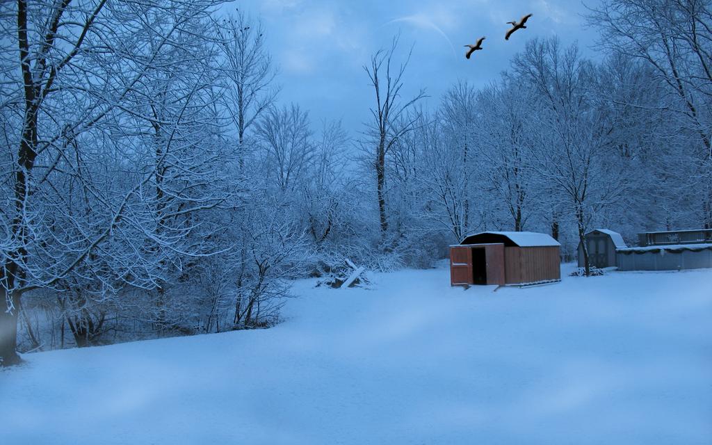 Snow in the Backyard Premade by TheArmouredBear