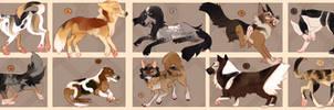 Discount (1\10) Dog Pound Adopts