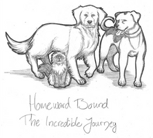 HTP - Homeward Bound: The Incredible Journey by 1Jade2
