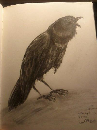 Spidered Eyed Raven by LilMejium
