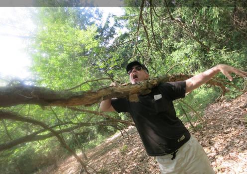 When Good Trees Go Bad
