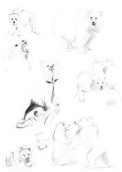 Bears Sketch by kawai-hime