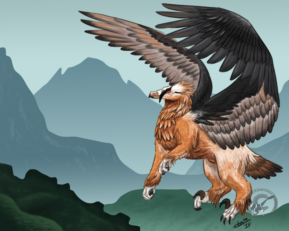 Bearded Vulture Griffin by InterfectorFactory