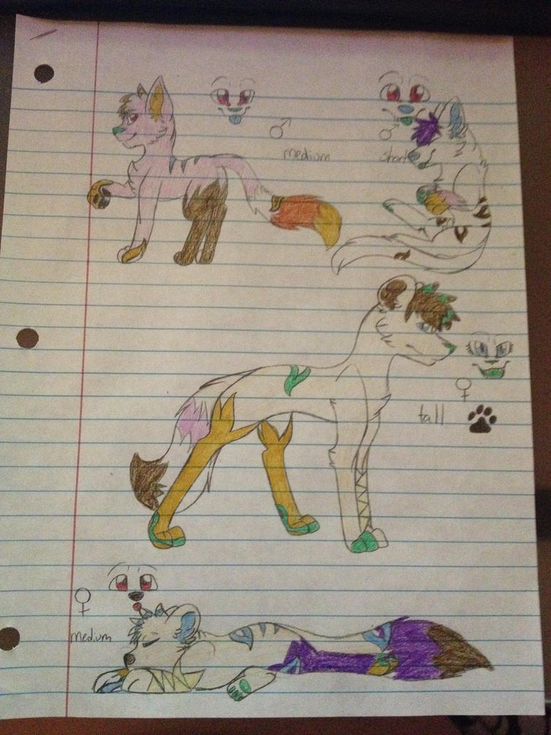 Jarrid x sheyth 4 pup litter - Danielle945 by WolfytheCorsky