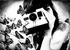 butterflies die alone. by Lady2