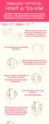 head_proportions_tutorial3. by Lady2