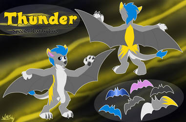 Thunder Reference Sheet [commission]