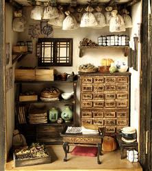Traditional oriental Herbal Medicine Shop by dollhouseara