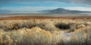 Antelope Island Afternoon