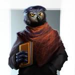 Were Owl