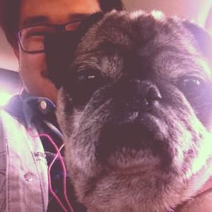 Jose-Kulio's Profile Picture