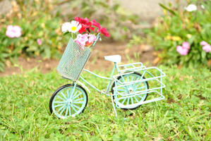 .: Bicicleta :. by OhAnika