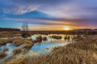 Winter Sun by DanielHeydecke