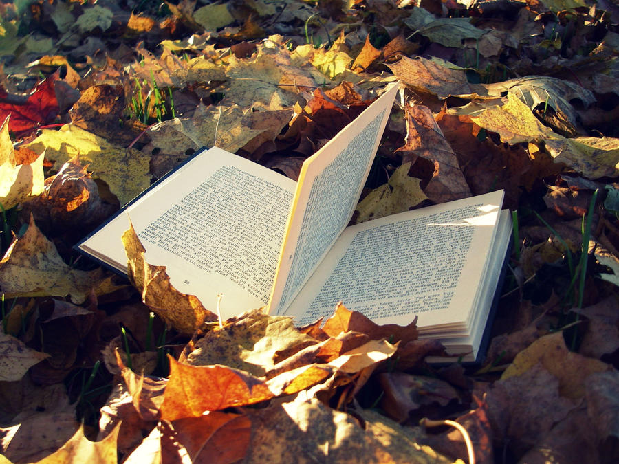 4 Books of Poetry to Help You Transition from Patio Beers to Fireside Lattes