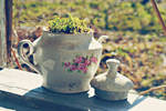 A Teapot of Spring by frenchija