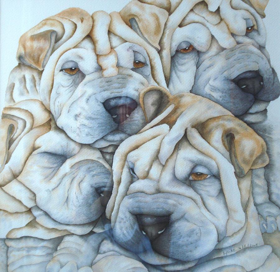 Sharpei puppies by Ahau2
