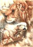 a lion's hug