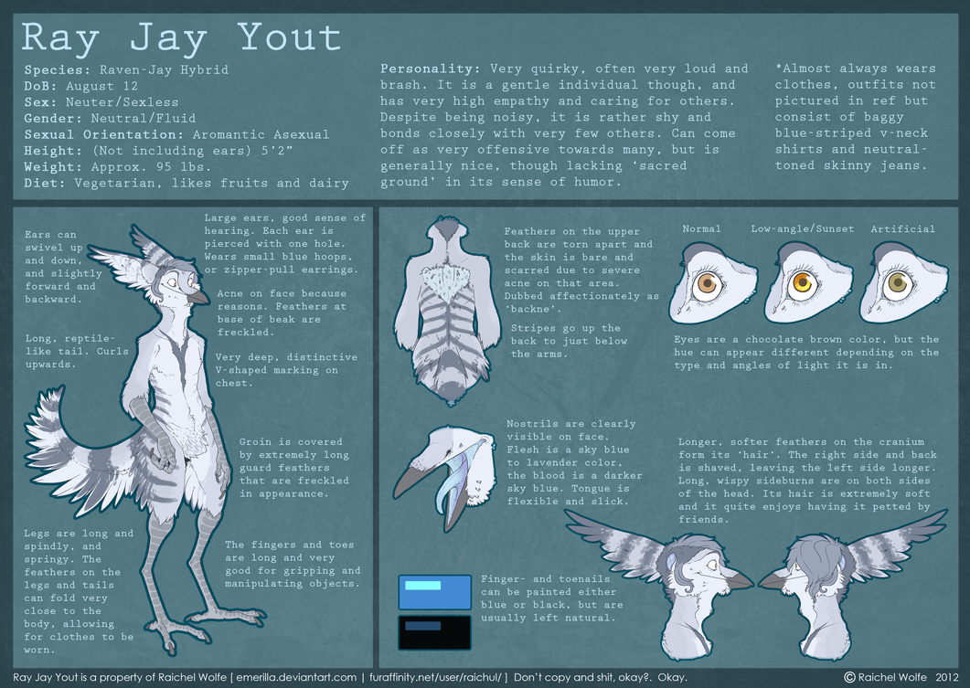 Ray Jay Yout 2012 REFERENCE SHEET by VCR-WOLFE