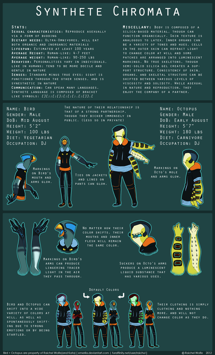 Bird+Octopus 2012 REFERENCE SHEET by R-WOLFE