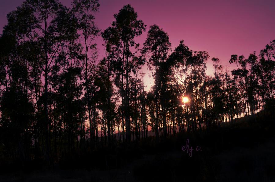 purple landscape by aPurringCat