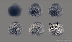 Short Fur Study