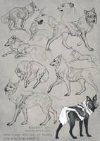 Sketch page by areot