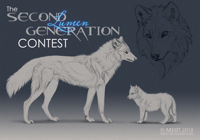 The Second Generation CONTEST by areot
