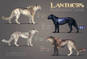 Lanthers Auction | CLOSED