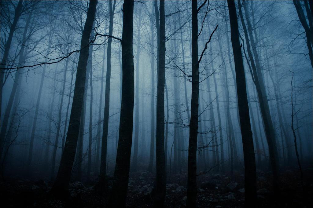 twilight by borisdelac