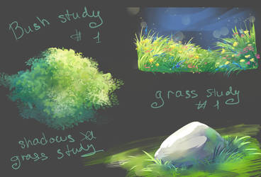 Grass and bush study sketch by LuckyTraveller