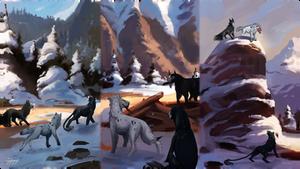 WOR || Tundra Trials