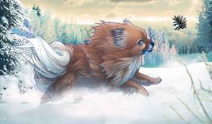 Mini the Pomeranian - finished-