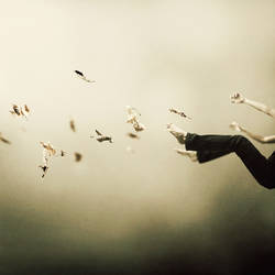 I Was Falling High by MartinStranka