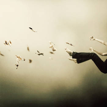 I Was Falling High by MartinStranka