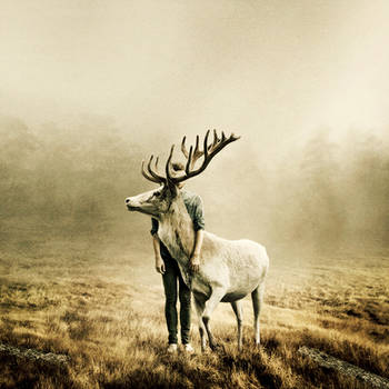 Wait A Little Longer by MartinStranka