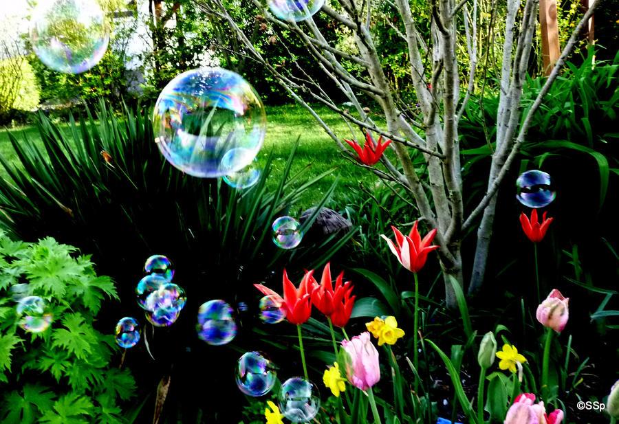 Soap bubbles 3 by Lionpelt-66