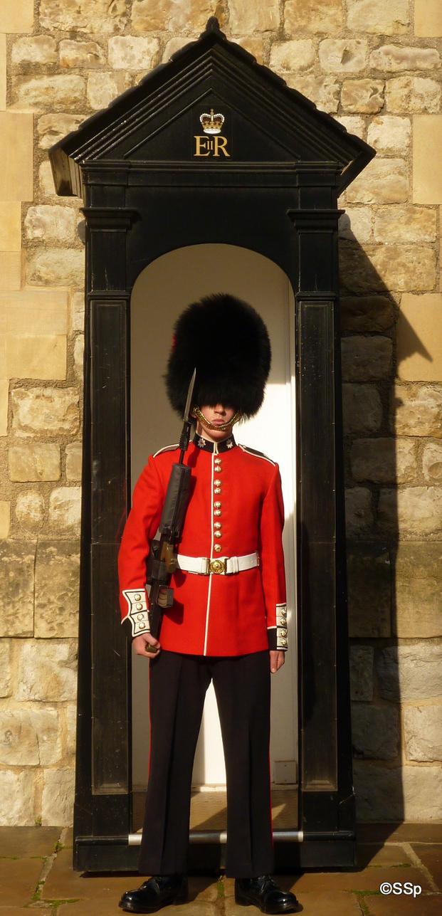 Royal guard by Lionpelt-66