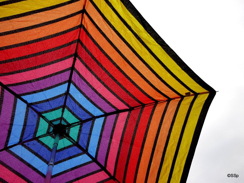 Umbrella time by Lionpelt-66