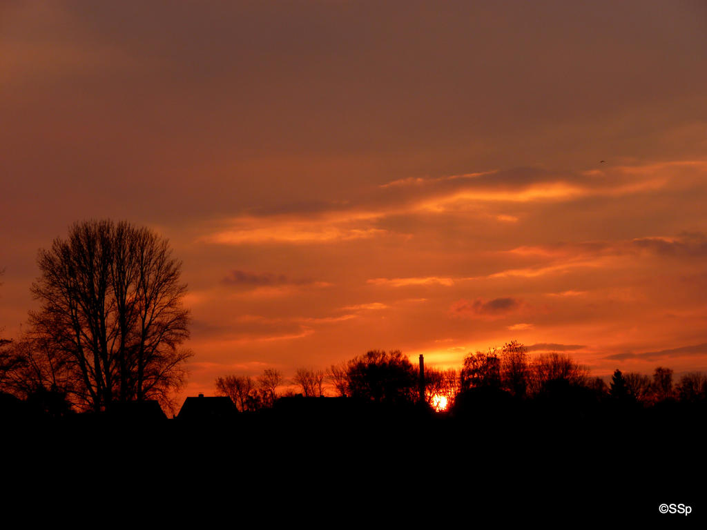 Sunset by Lionpelt-66