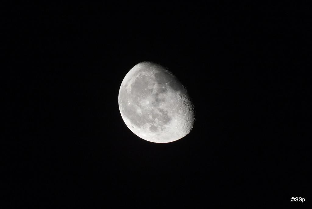 La Luna by Lionpelt-66