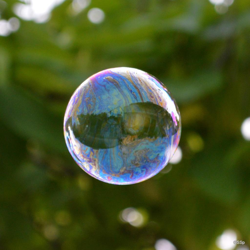 Rainbow Bubble by Lionpelt-66