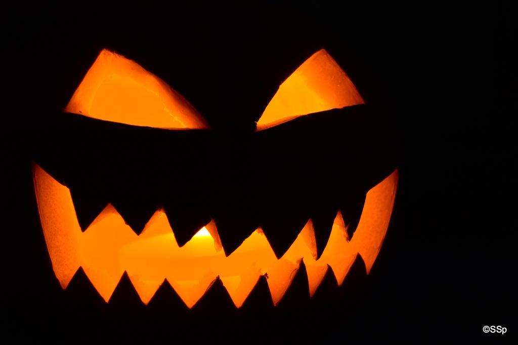 Happy Halloween! by Lionpelt-66