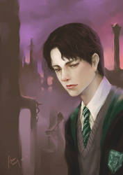 Tom Riddle by woshibbdou