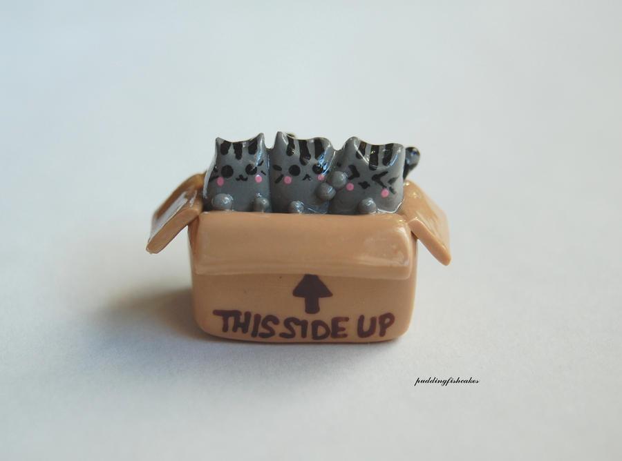 Tiny Boxed Pusheen Cats by puddingfishcakes