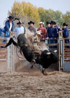 TVCC 08:  Dirts a Flyin by saudimack